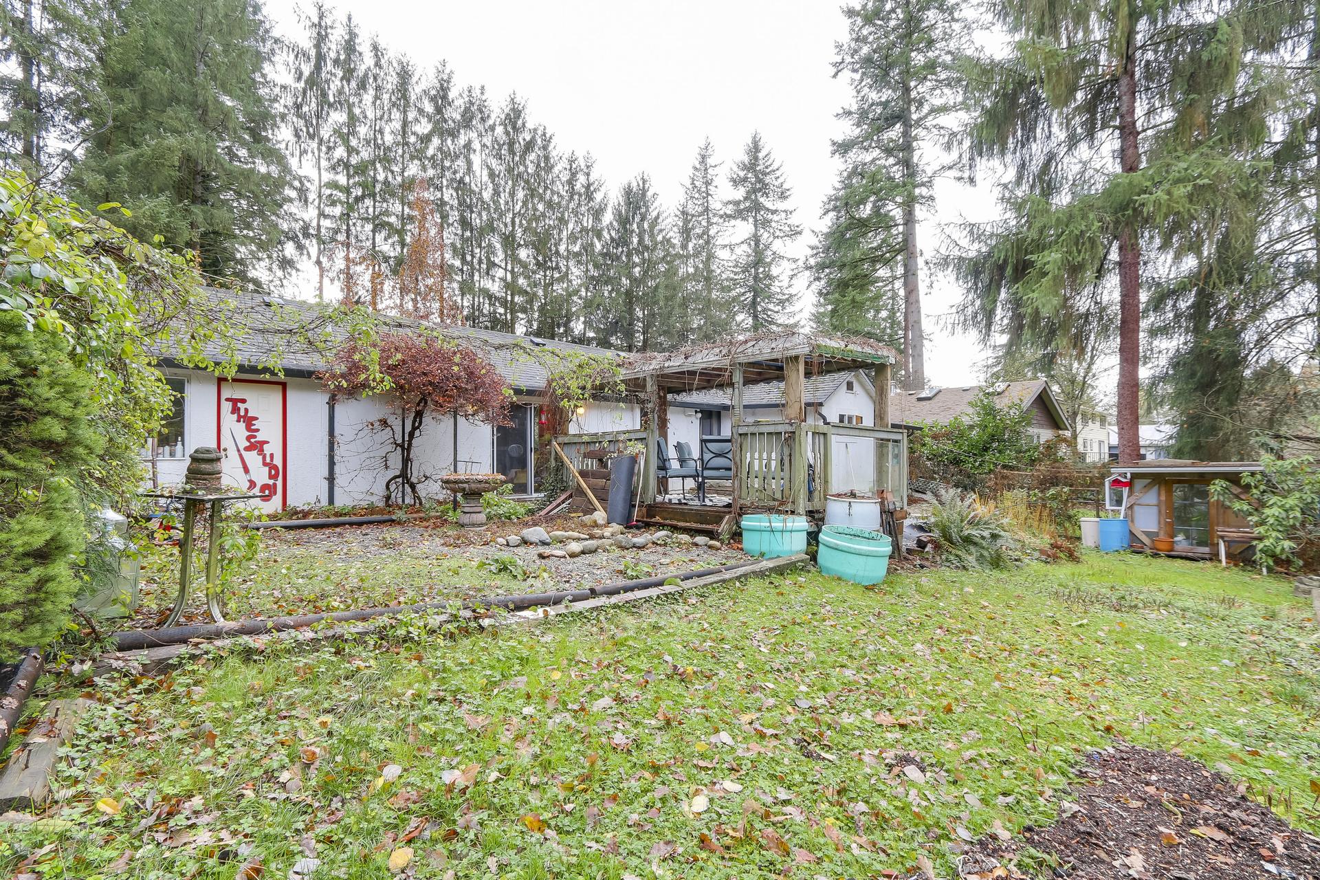 Back yard at 23287 Dogwood Avenue, East Central, Maple Ridge