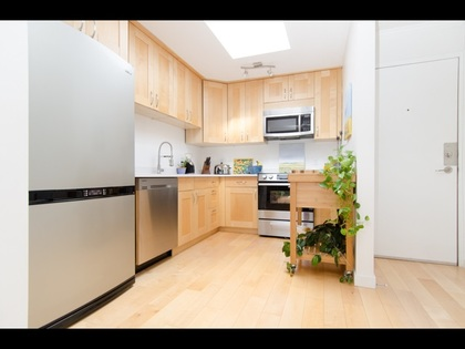 11 at 307 - 111 W 10th, Mount Pleasant VW, Vancouver West