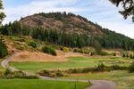 2006-troon-court-bear-mountain-langford-22 at 108 - 2006 Troon Court, Bear Mountain, Langford