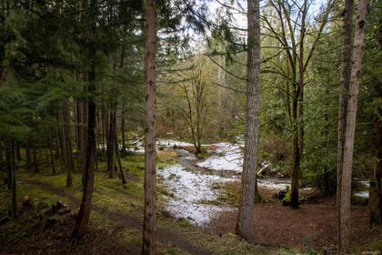 715-lorimer-road-western-highlands-highlands-19 at 715 Lorimer Road, Western Highlands, Highlands