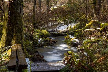 715-lorimer-road-western-highlands-highlands-20 at 715 Lorimer Road, Western Highlands, Highlands