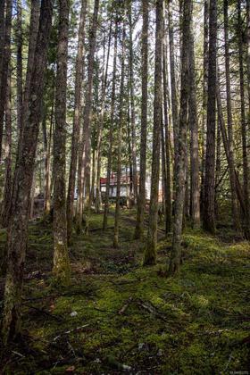 715-lorimer-road-western-highlands-highlands-23 at 715 Lorimer Road, Western Highlands, Highlands