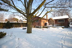 Backyard at 53 Dukinfield Crescent, Parkwoods-Donalda, Toronto