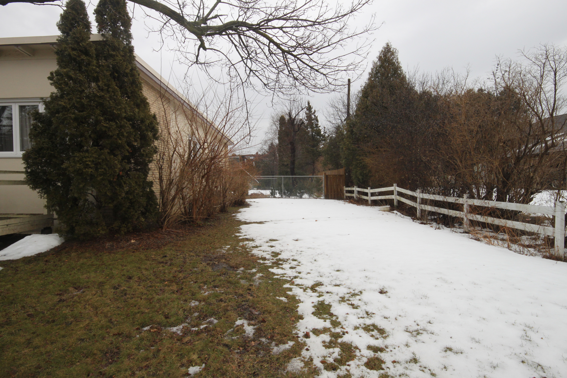 Backyard at 11 Belton Road, Banbury-Don Mills, Toronto