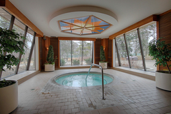 Hot Tub at 101 - 3 Concorde Place, Banbury-Don Mills, Toronto