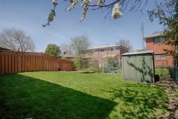 Backyard at 172 Old Sheppard Avenue, Pleasant View, Toronto