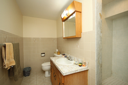 Lower Level 3 Piece Bathroom at 172 Old Sheppard Avenue, Pleasant View, Toronto
