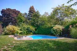 Backyard at 97 Castlegrove Boulevard, Parkwoods-Donalda, Toronto