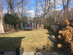 Backyard at 151 Three Valleys Drive, Parkwoods-Donalda, Toronto