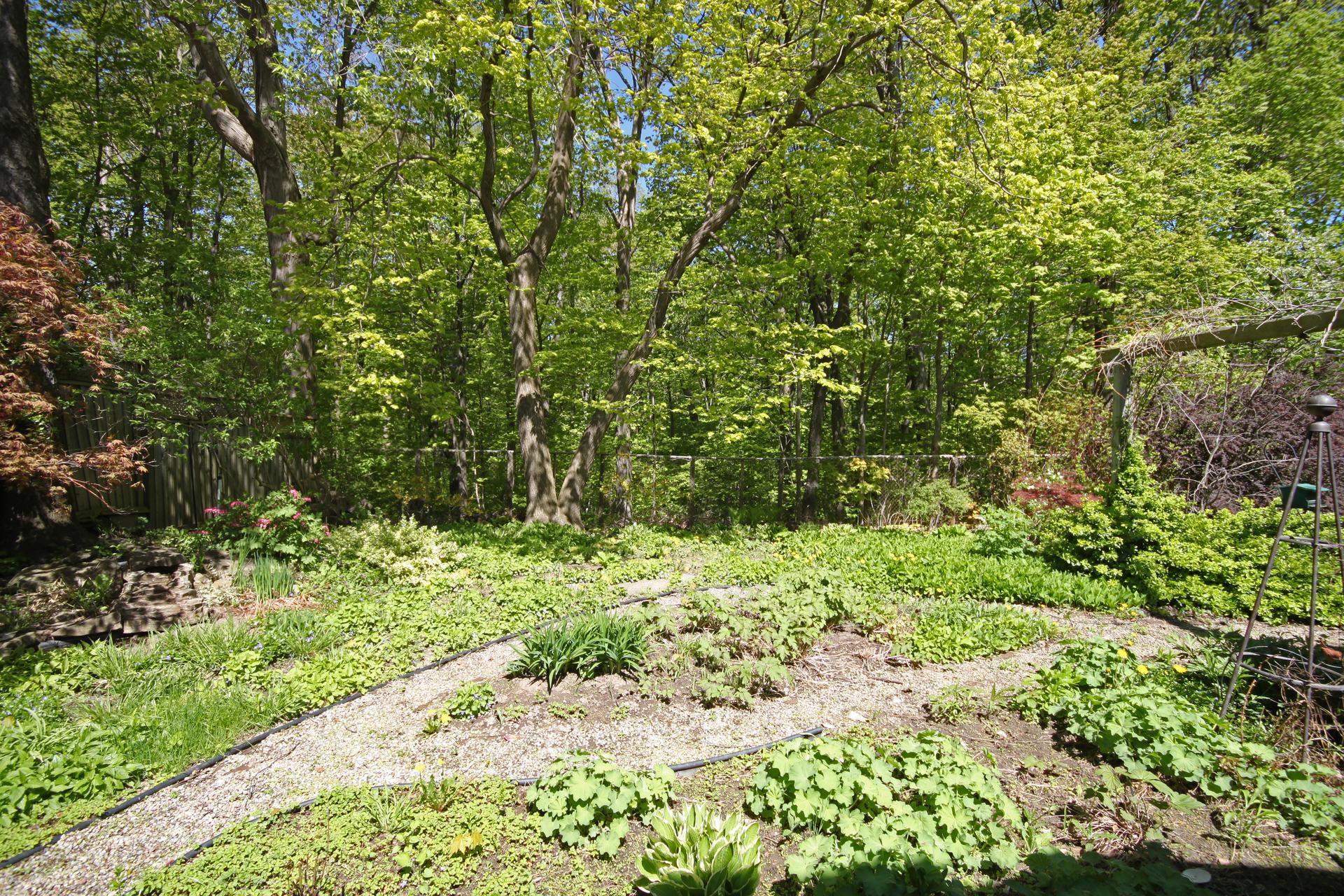 Backyard at 128 Cassandra Boulevard, Parkwoods-Donalda, Toronto
