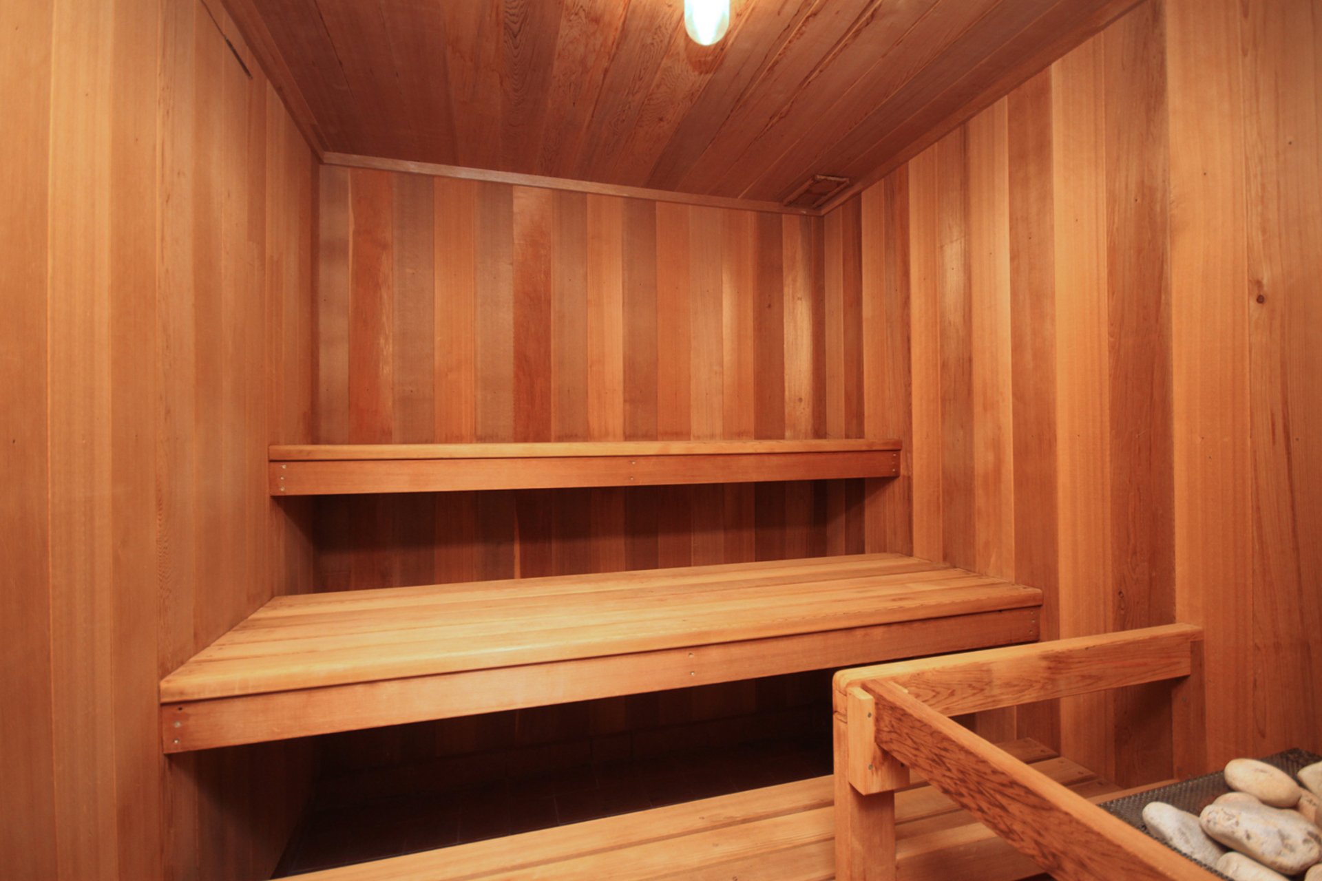 Sauna at 8 Butterfield Drive, Parkwoods-Donalda, Toronto