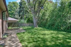 Backyard at 31 Groveland Crescent, Parkwoods-Donalda, Toronto