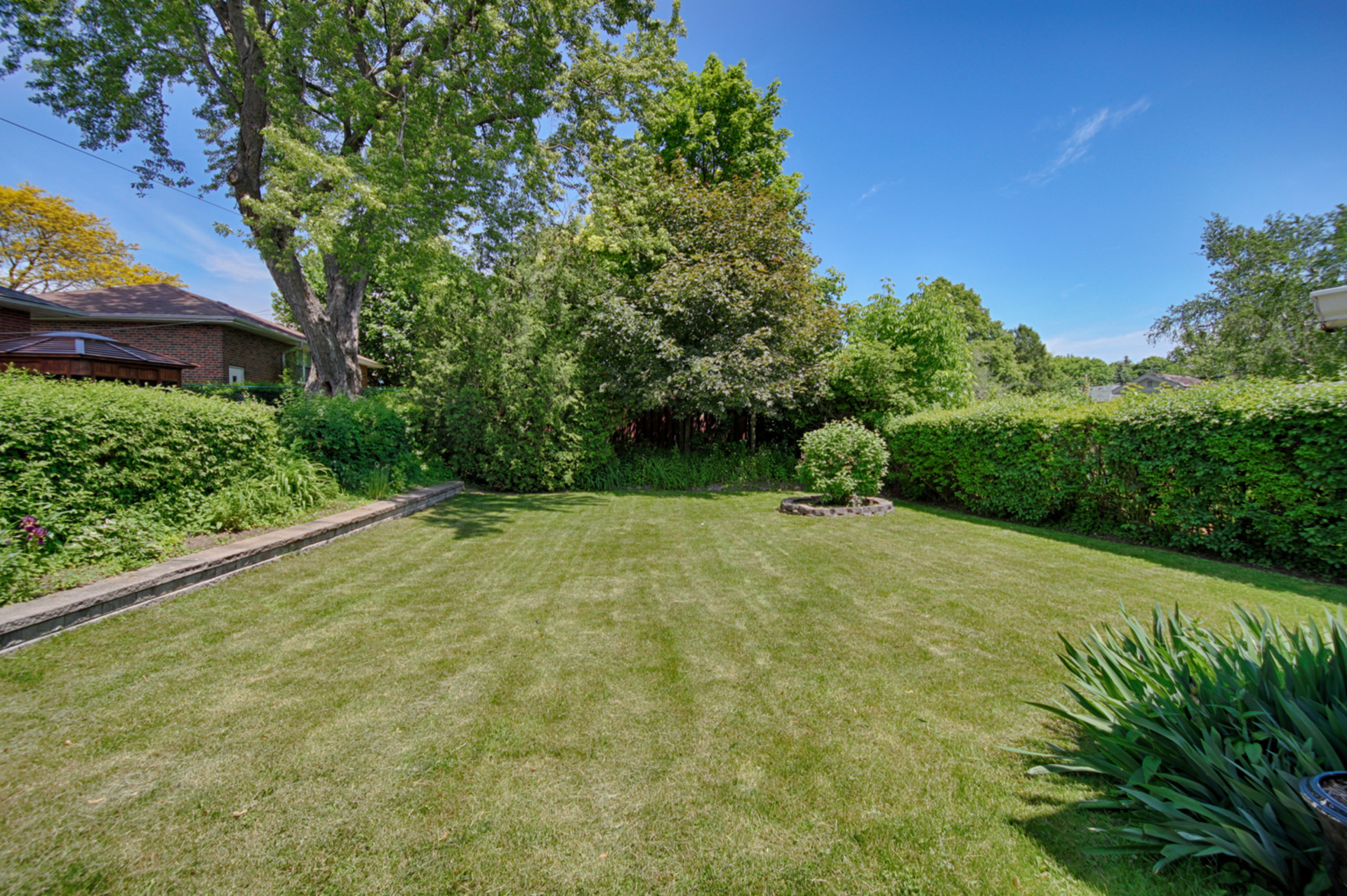 Backyard at 145 Sloane Avenue, Victoria Village, Toronto