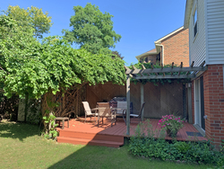 Backyard at 1182 Maple Gate Road, Liverpool, Pickering