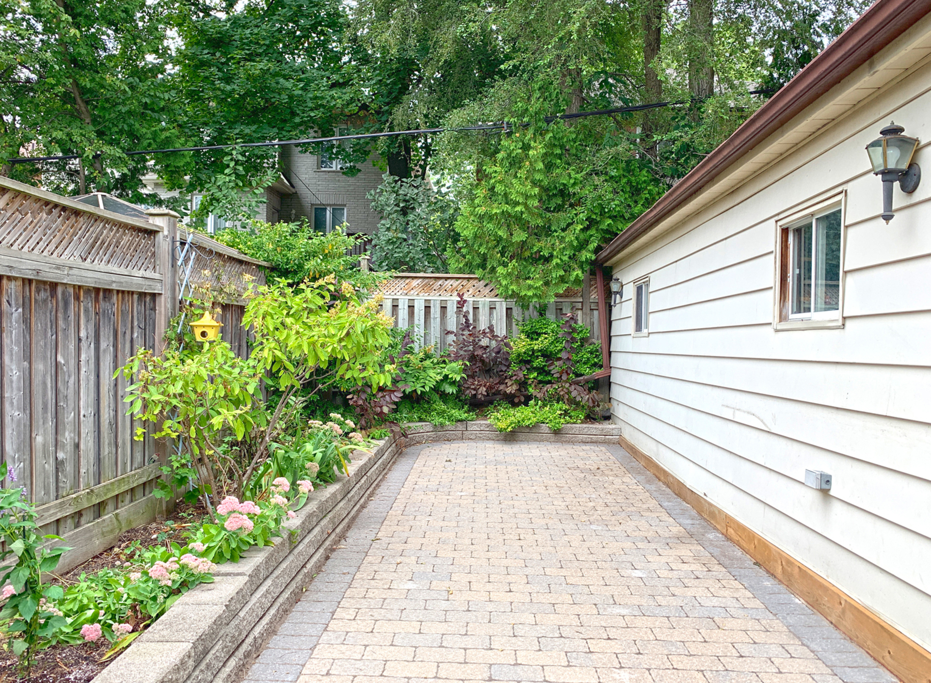 Backyard at 264 Spring Garden Avenue, Willowdale East, Toronto