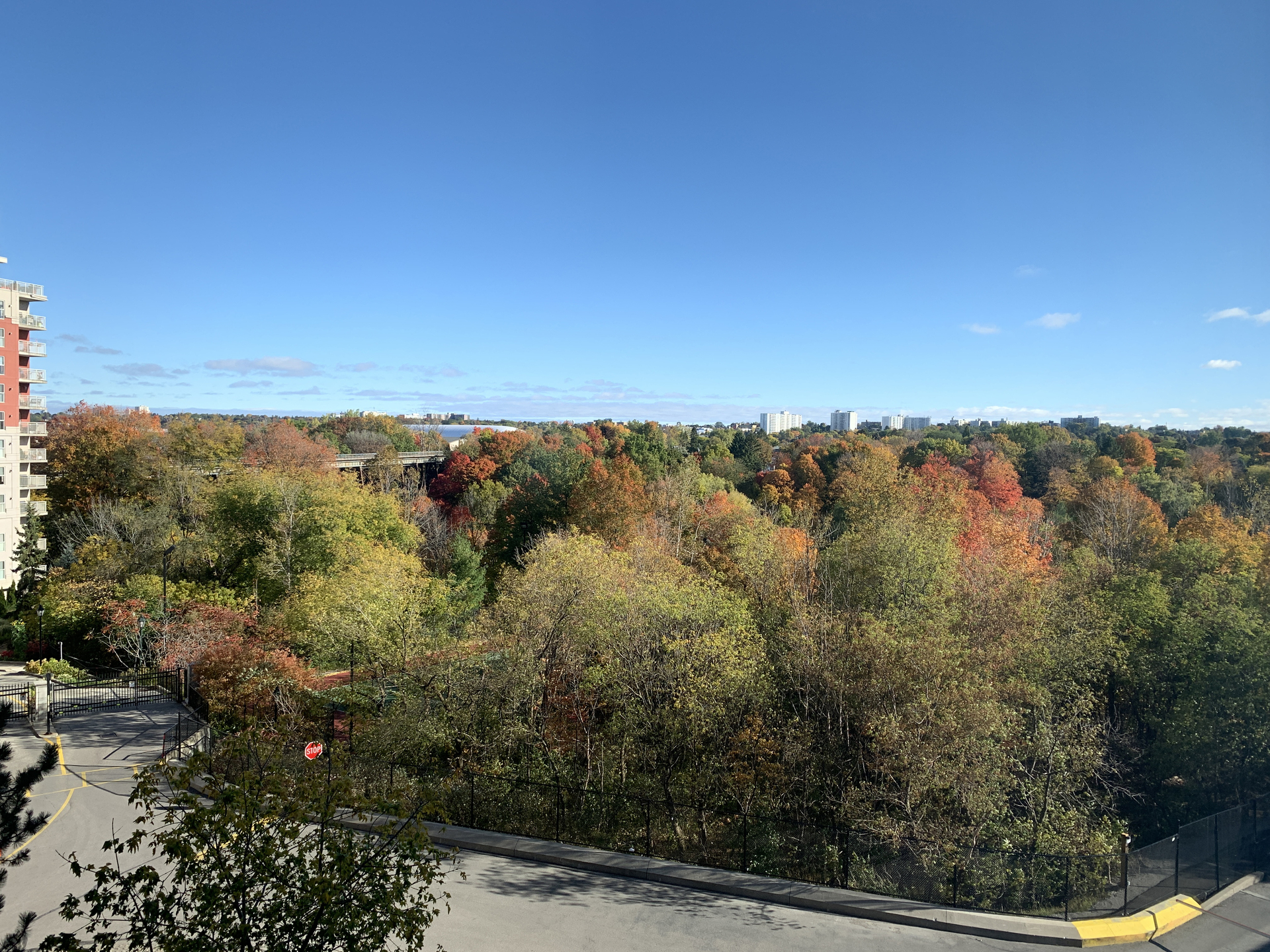 View from Suite at 309 - 7 Concorde Place, Banbury-Don Mills, Toronto