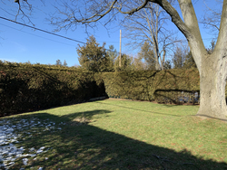 Backyard at 110 Plateau Crescent, Banbury-Don Mills, Toronto