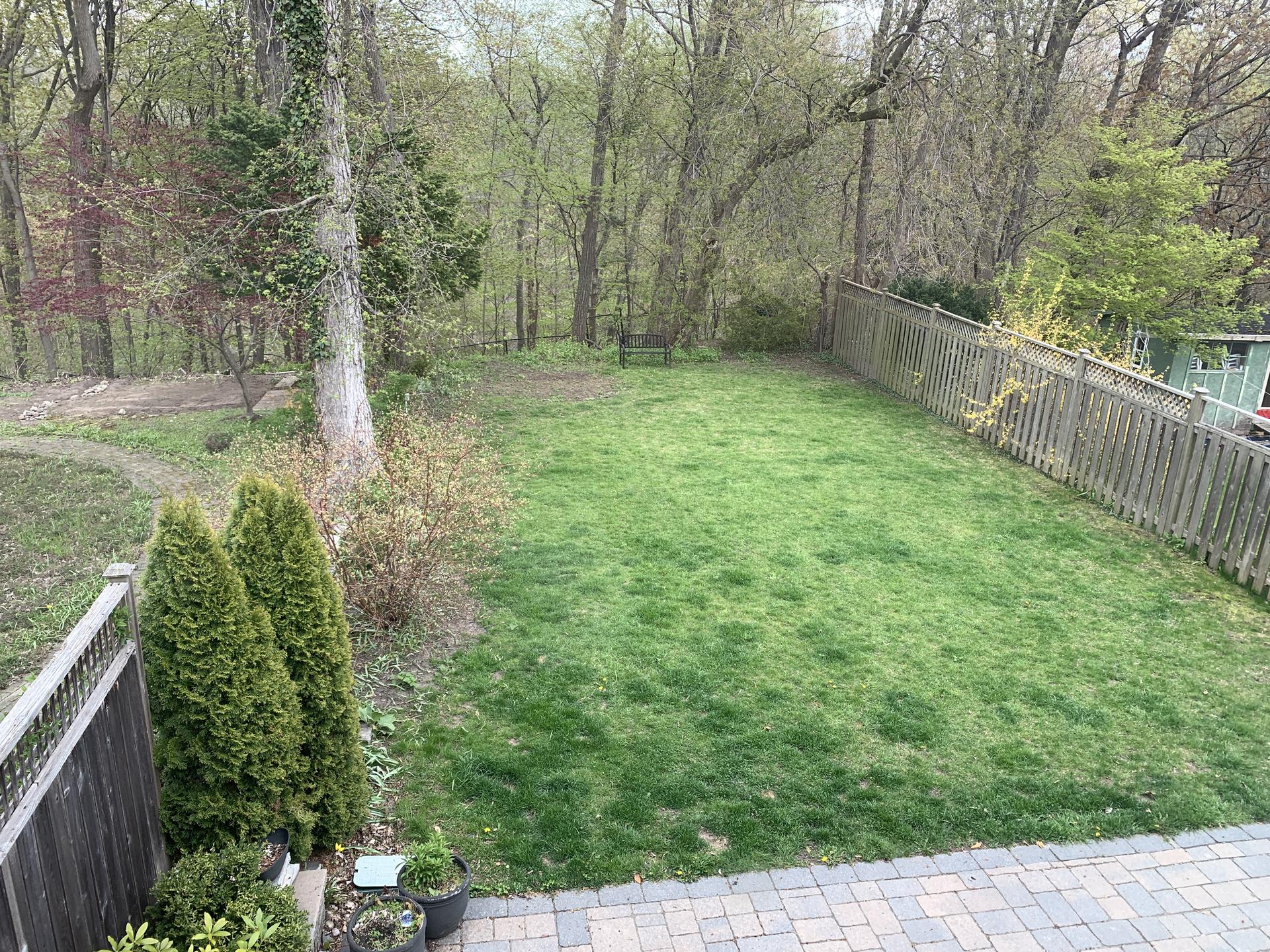 View of Backyard at 151 Three Valleys Drive, Parkwoods-Donalda, Toronto