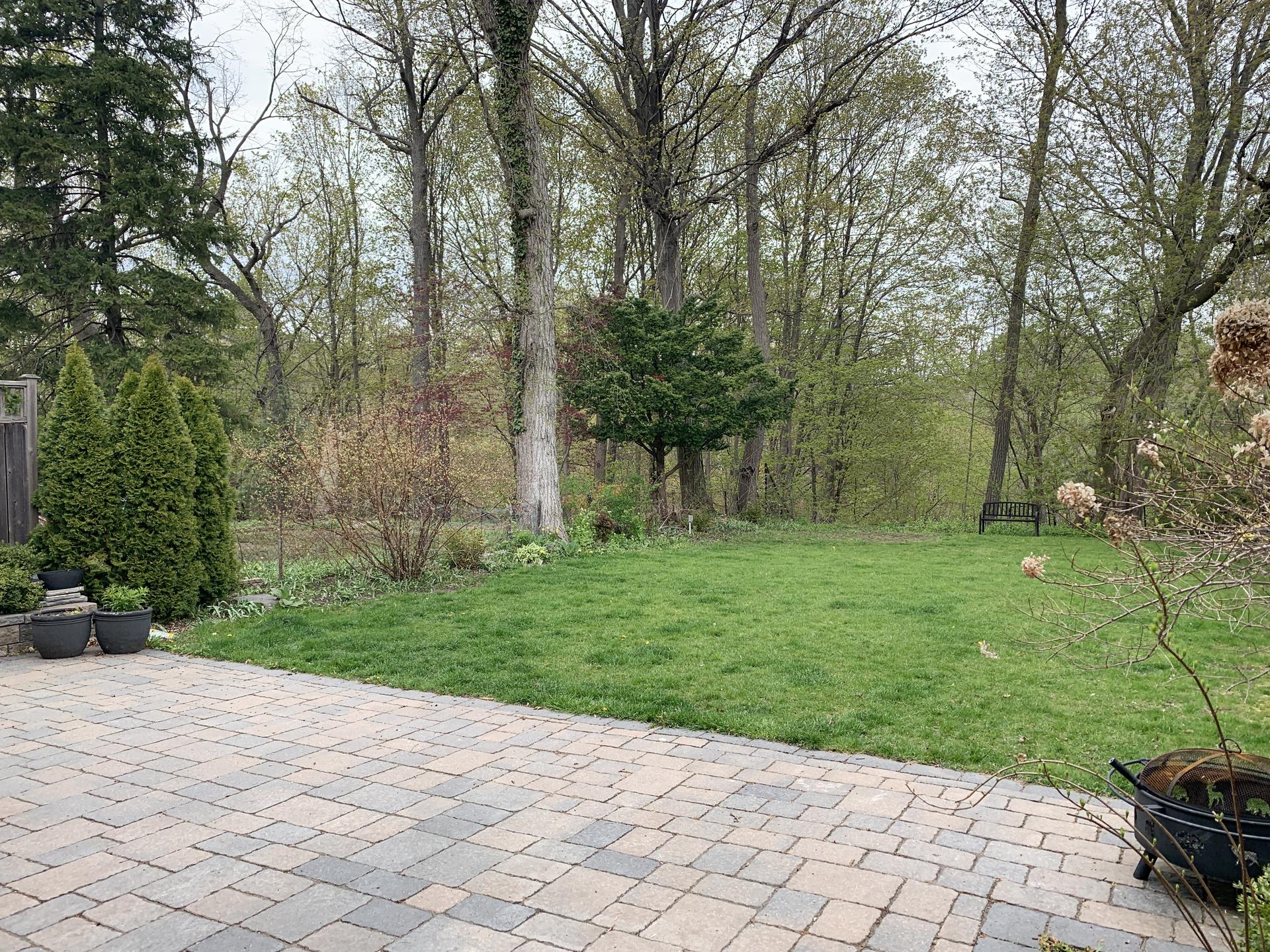 Backyard at 151 Three Valleys Drive, Parkwoods-Donalda, Toronto