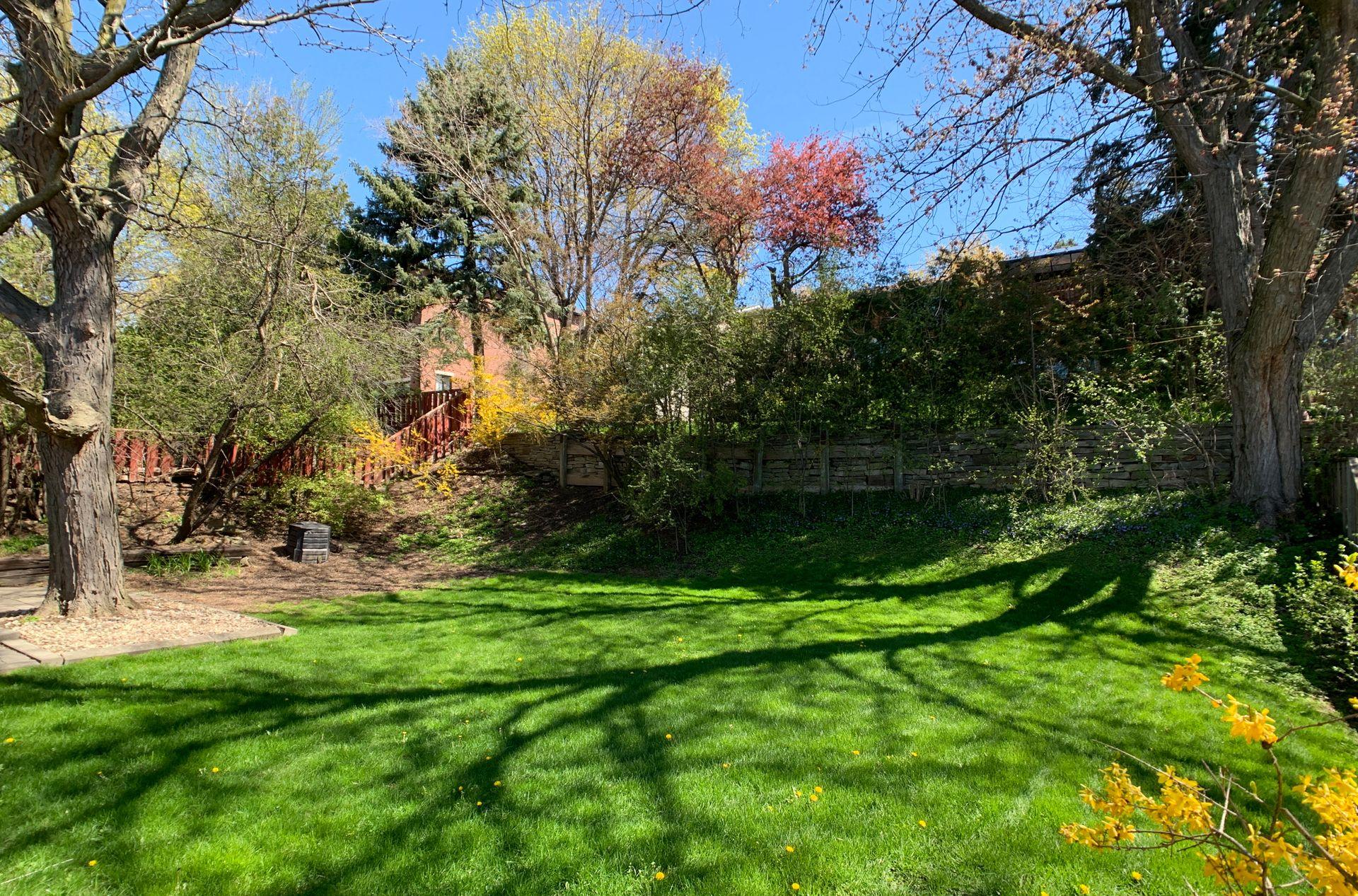 Backyard at 17 Olsen Drive, Parkwoods-Donalda, Toronto
