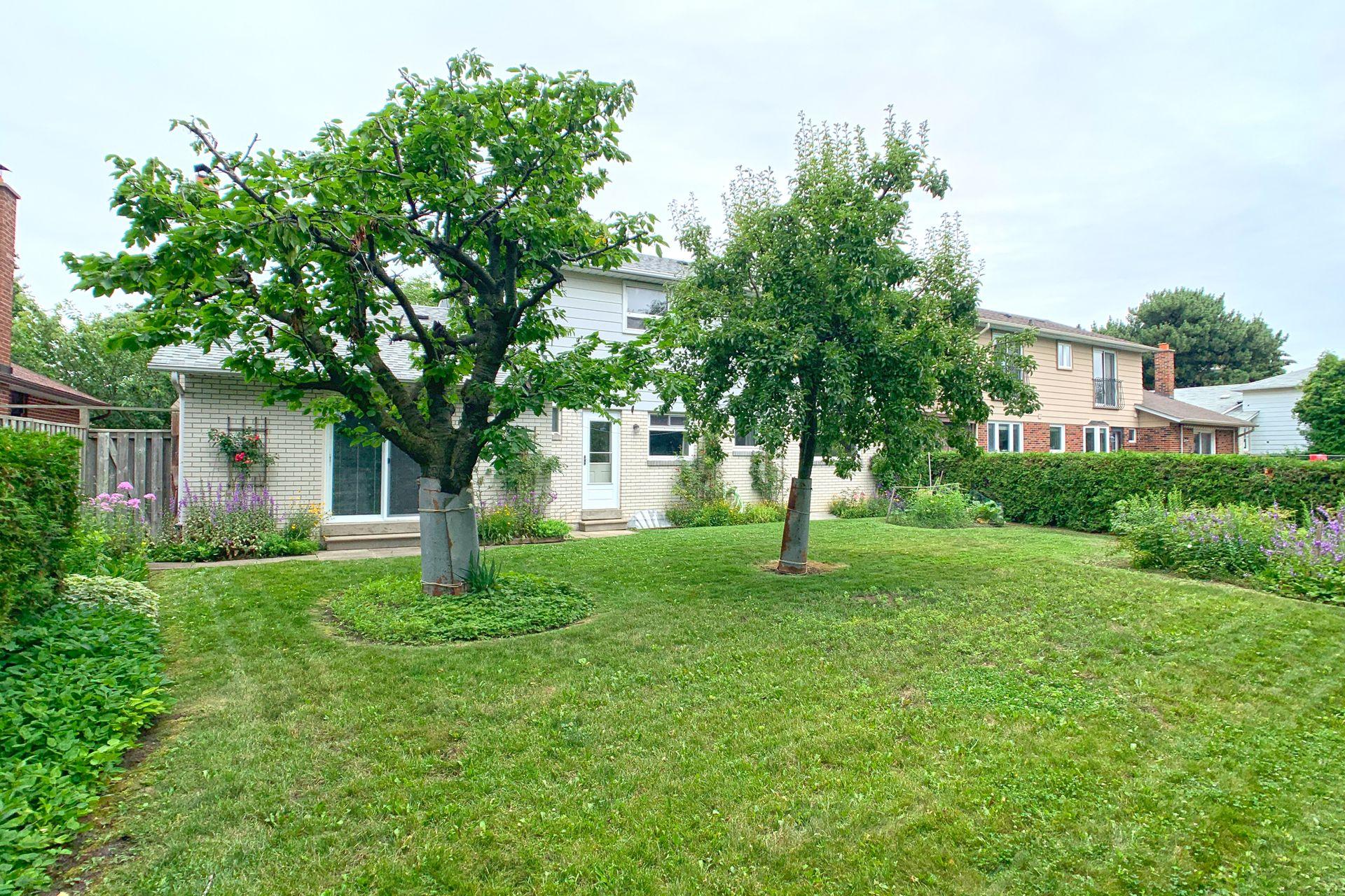 Backyard at 9 Deerpath Road, Parkwoods-Donalda, Toronto
