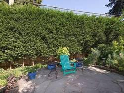 5e7d5c887726990eb25c04d3efe9228d.jpeg at 4210 Blenheim Street, MacKenzie Heights, Vancouver West