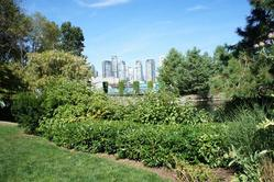 Resized-7 at 101 - 1477 Fountain Way, False Creek, Vancouver West