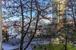 partial views through the trees at 491 Broughton, Coal Harbour, Vancouver West