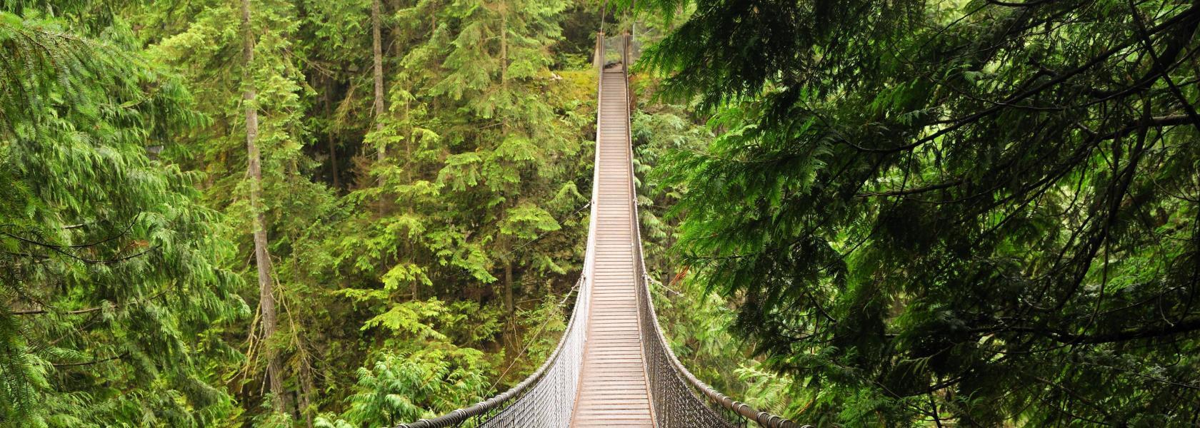 Lynn Valley, North Vancouver 2