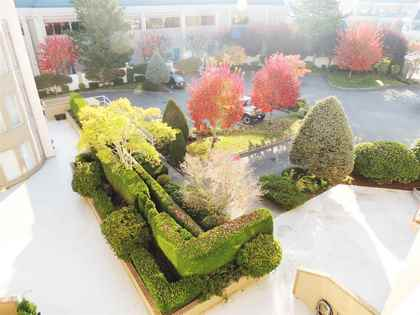 Exterior - View - Court Yard - Building - Condo at 421 - 2626 Countess Street, Abbotsford West, Abbotsford