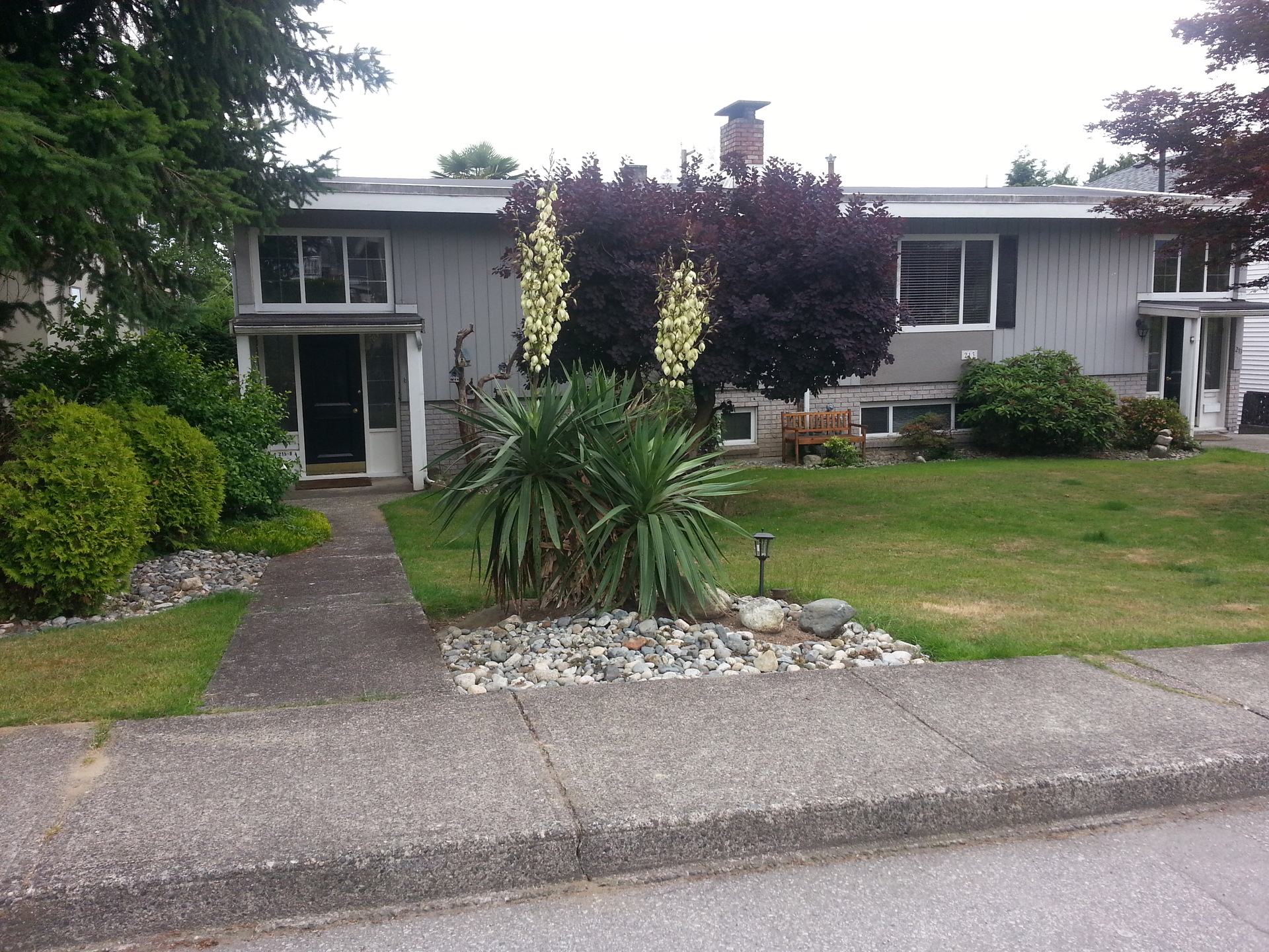 20180704_171652 at 213 - 215 21st Street East, Central Lonsdale, North Vancouver