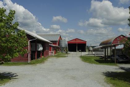Barn at 13222 Sharpe Road, North Meadows, Pitt Meadows