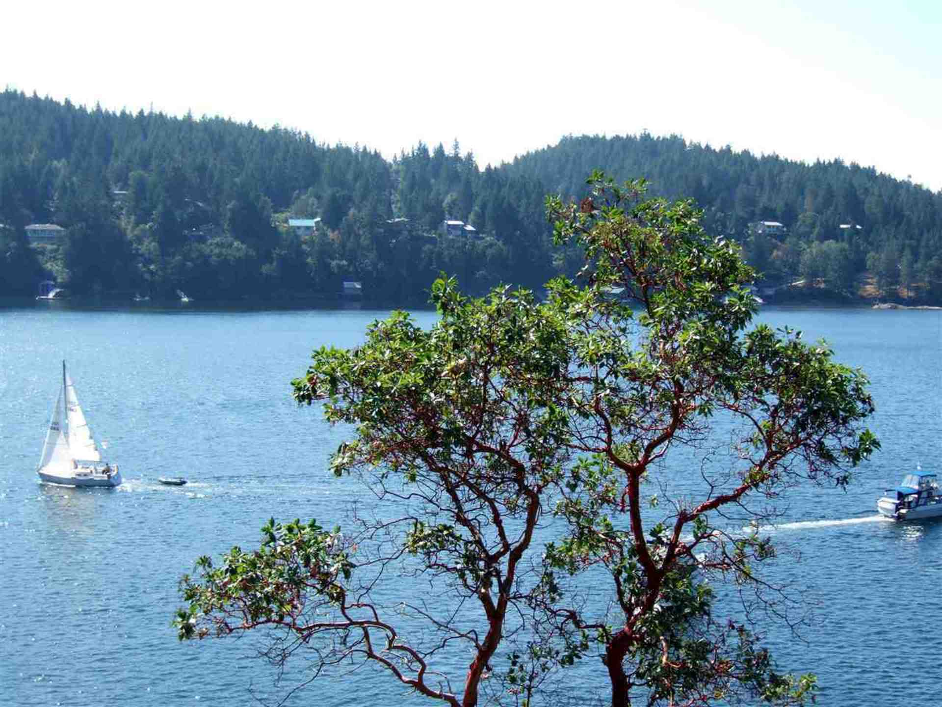 Lot 29 Pender Landing Road, Pender Harbour Egmont, Sunshine Coast
