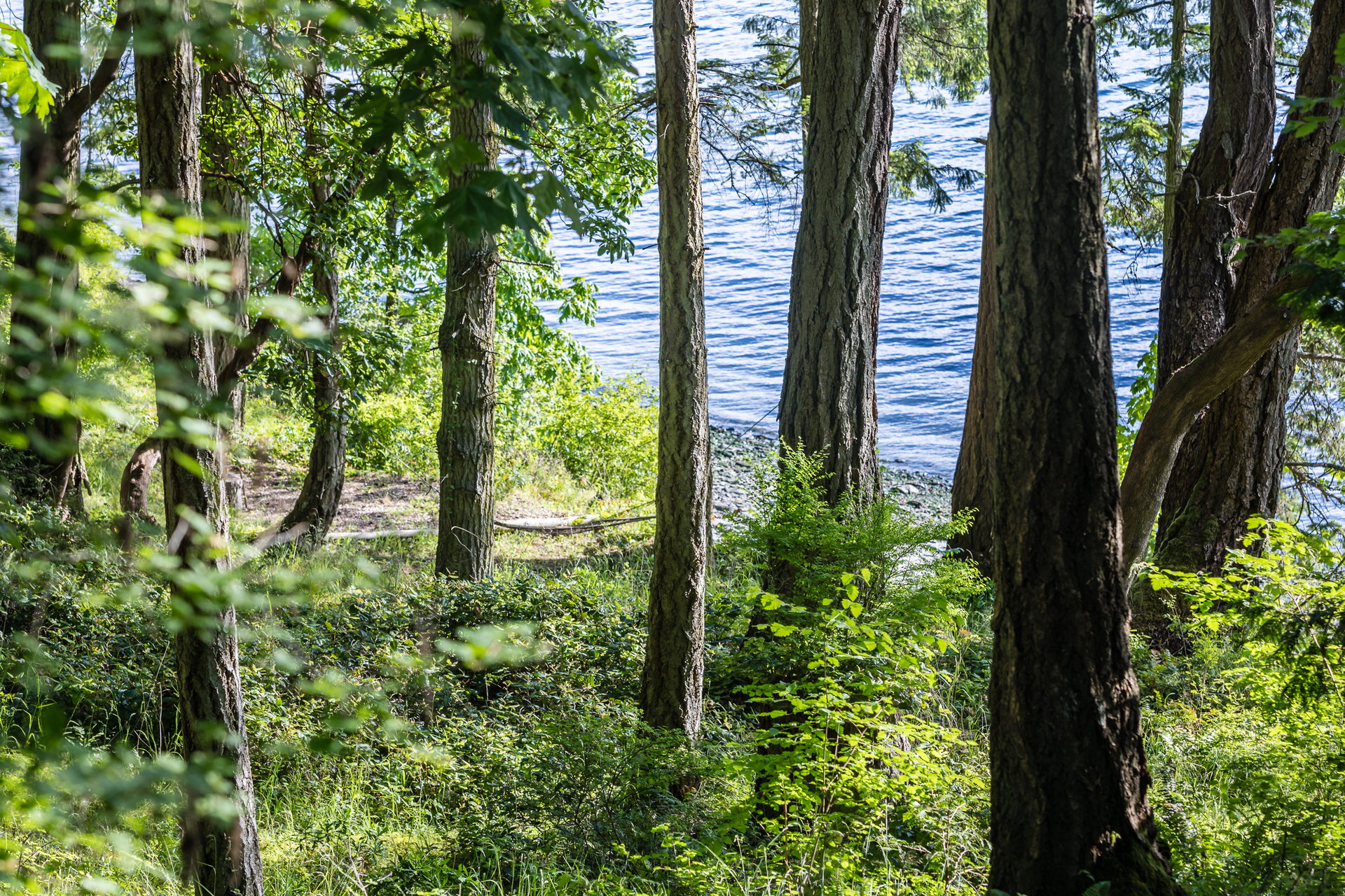 1500 Feet Of Oceanfront at 1850 Land's End Road, Lands End, North Saanich