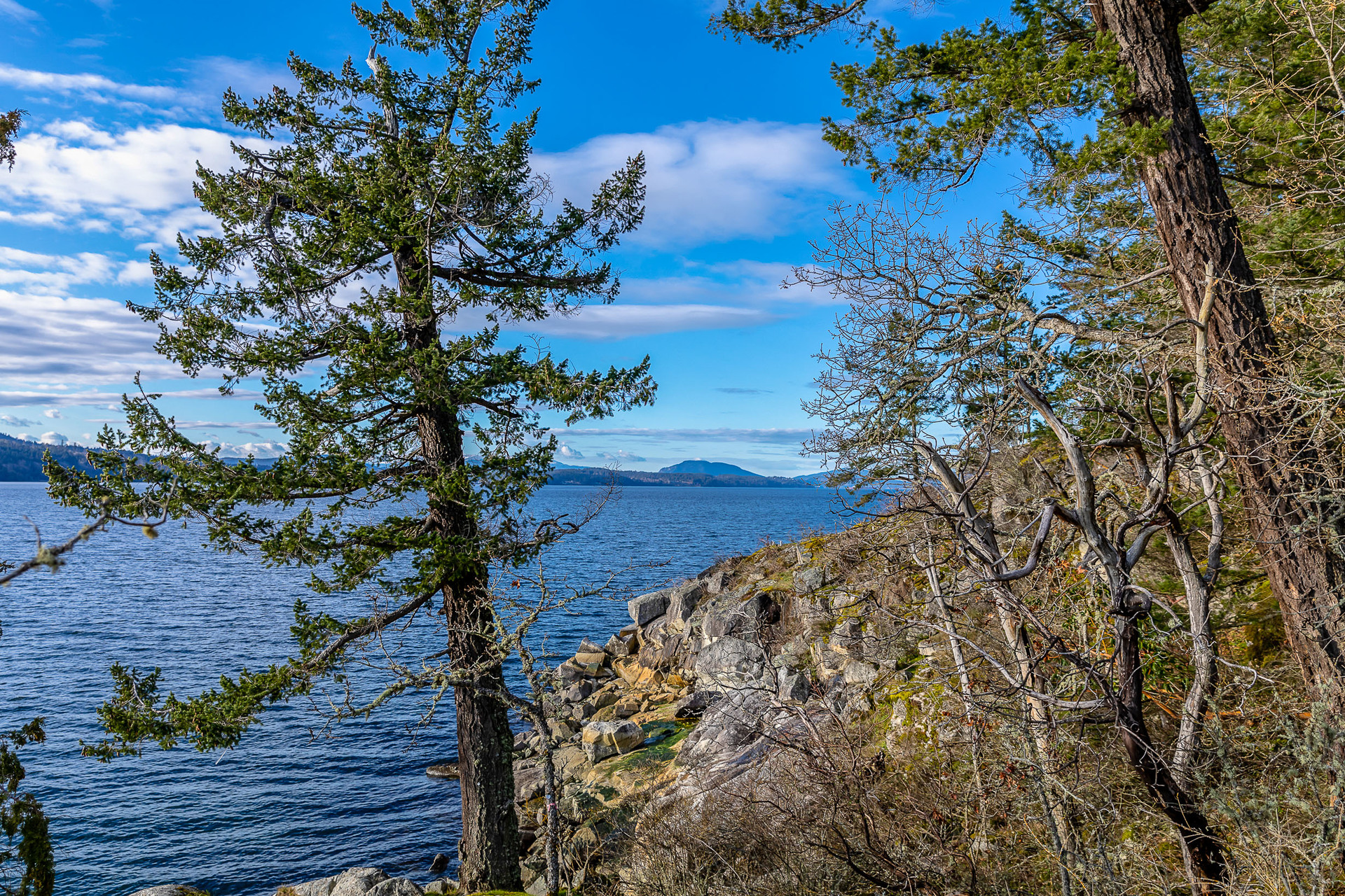 Perched on the Finlayson Arm at 8100 Mcphail Road, Inlet, Central Saanich
