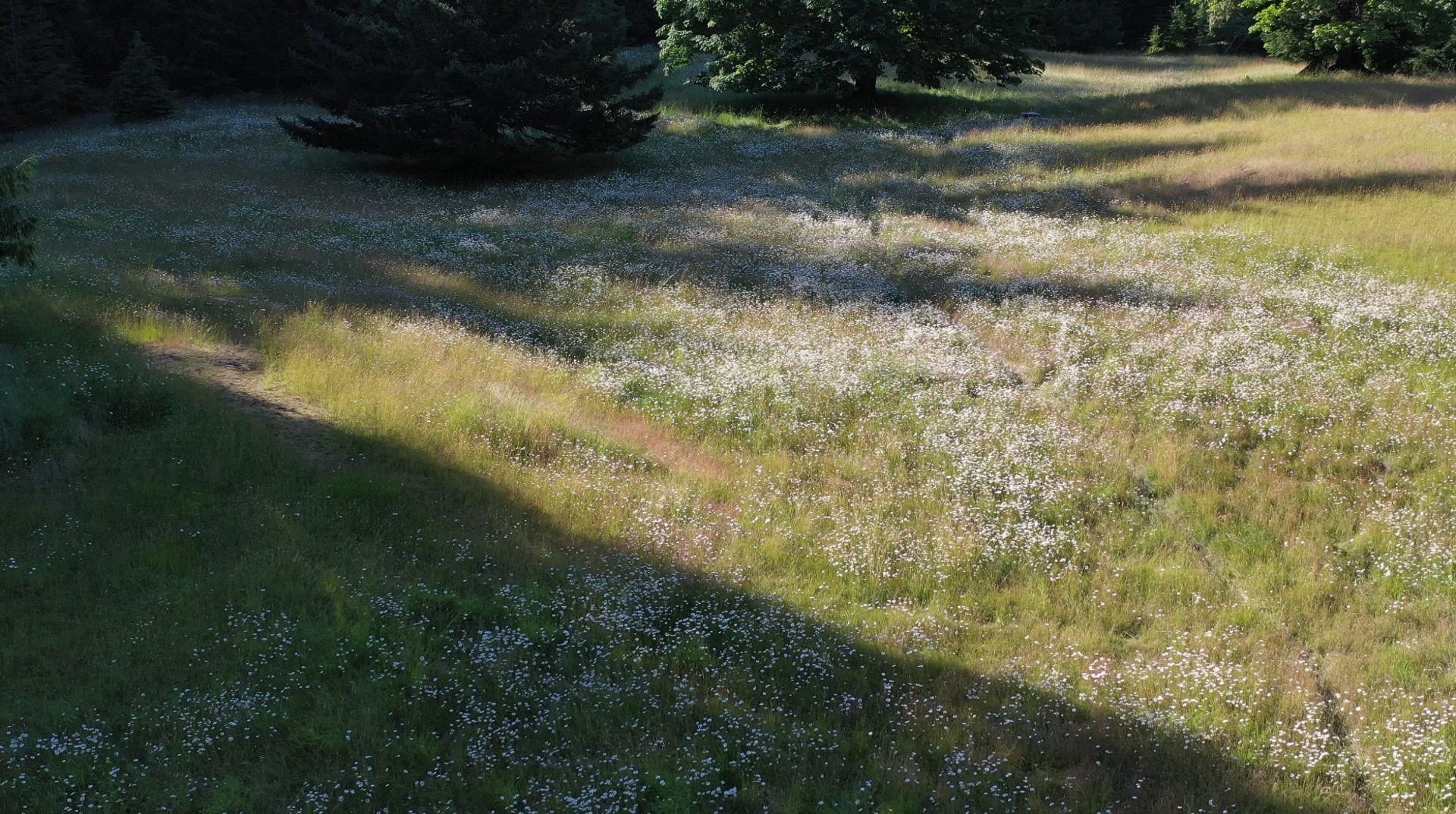 Sculpted Meadows at 377 Seymour Heights, Salt Spring, Gulf Islands