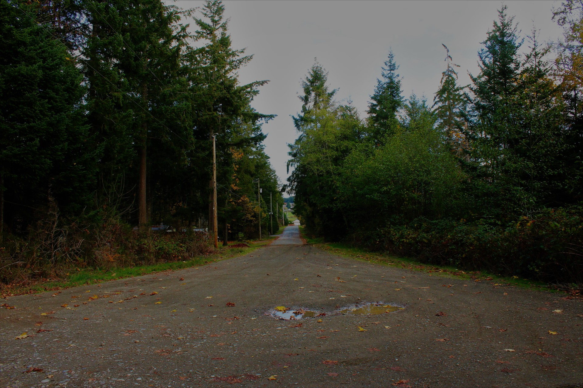 at 2123 Hector Road, Comox (Town of), Comox Valley