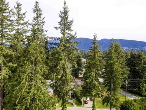 262281757-16-1 at 1131 West 21st Street, Pemberton Heights, North Vancouver