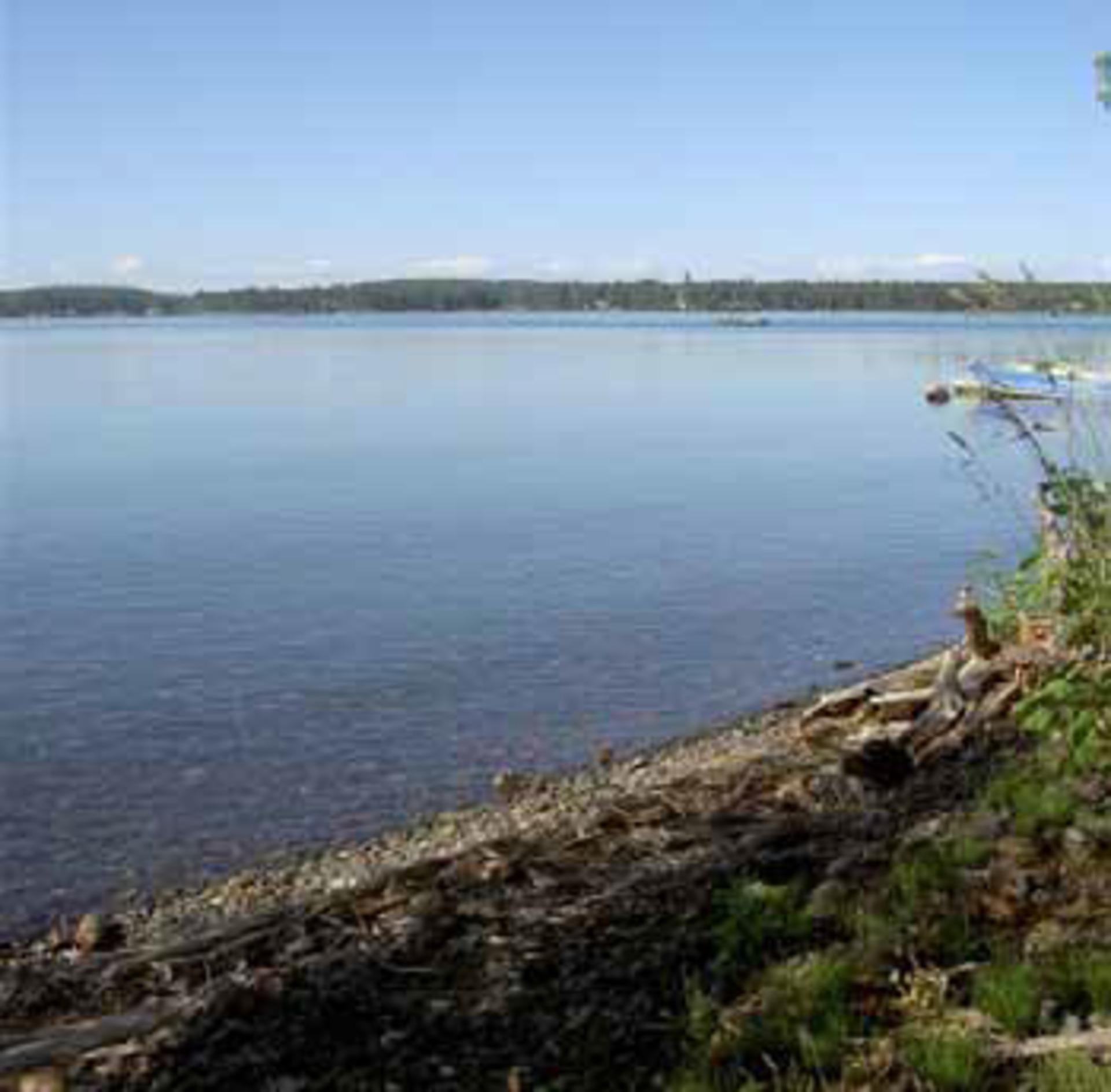 Sheridan Lake Real Estate at Lot 4 Kingfisher Road, Bridge Lake/Sheridan Lake, Cariboo