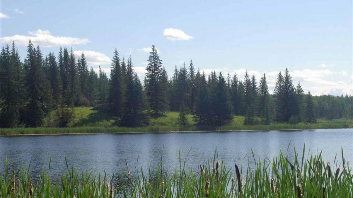 Lot 5 Kingfisher Road, Bridge Lake/Sheridan Lake, Cariboo