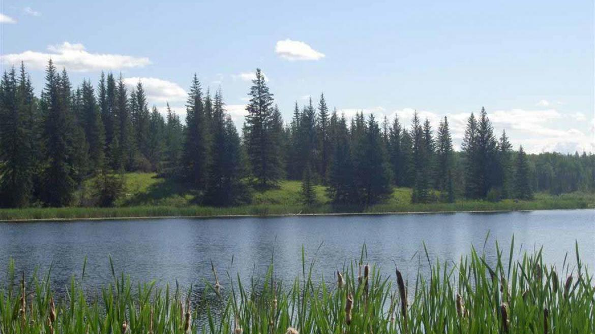 Lot 6 Kingfisher Road, Bridge Lake/Sheridan Lake, Cariboo