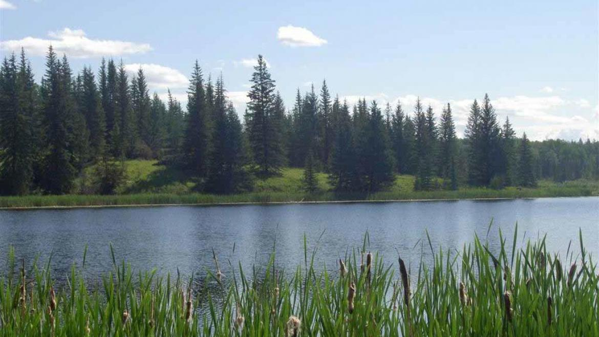 Lot 7 Kingfisher Road, Bridge Lake/Sheridan Lake, Cariboo