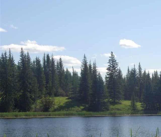 Lot 7 Kingfisher Road, Bridge Lake/Sheridan Lake, Cariboo 2