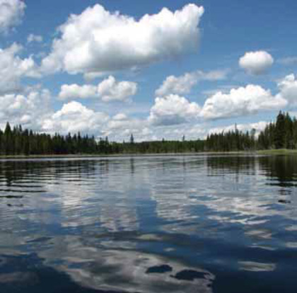 Sheridan Lake Real Estate at Lot 7 Kingfisher Road, Bridge Lake/Sheridan Lake, Cariboo