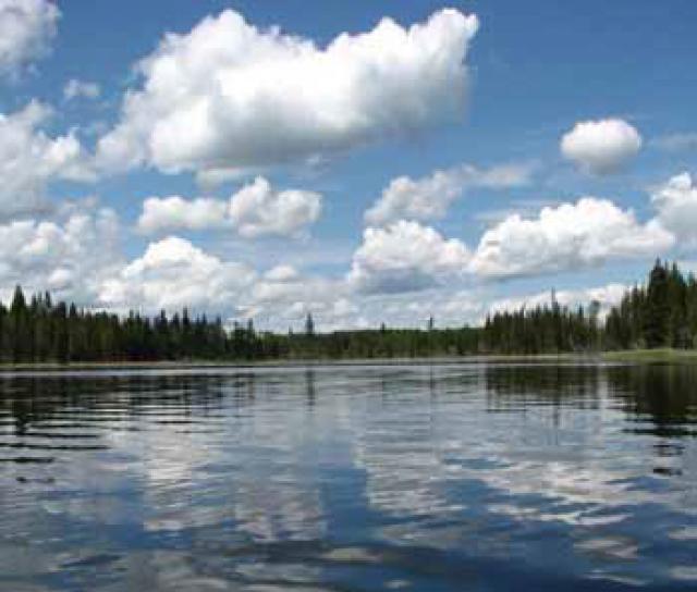 Lot 8 Kingfisher Road, Bridge Lake/Sheridan Lake, Cariboo 2