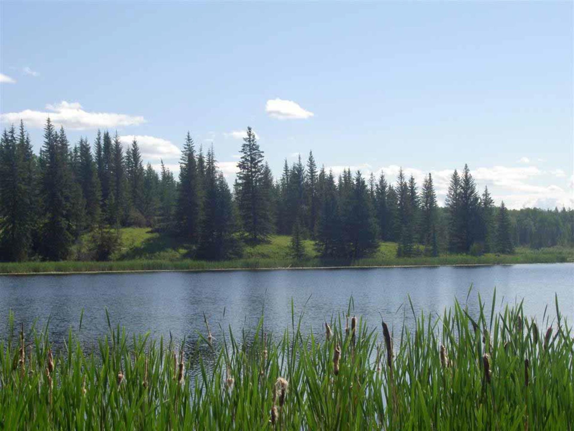 Sheridan Lake Real Estate at Lot 8 Kingfisher Road, Bridge Lake/Sheridan Lake, Cariboo