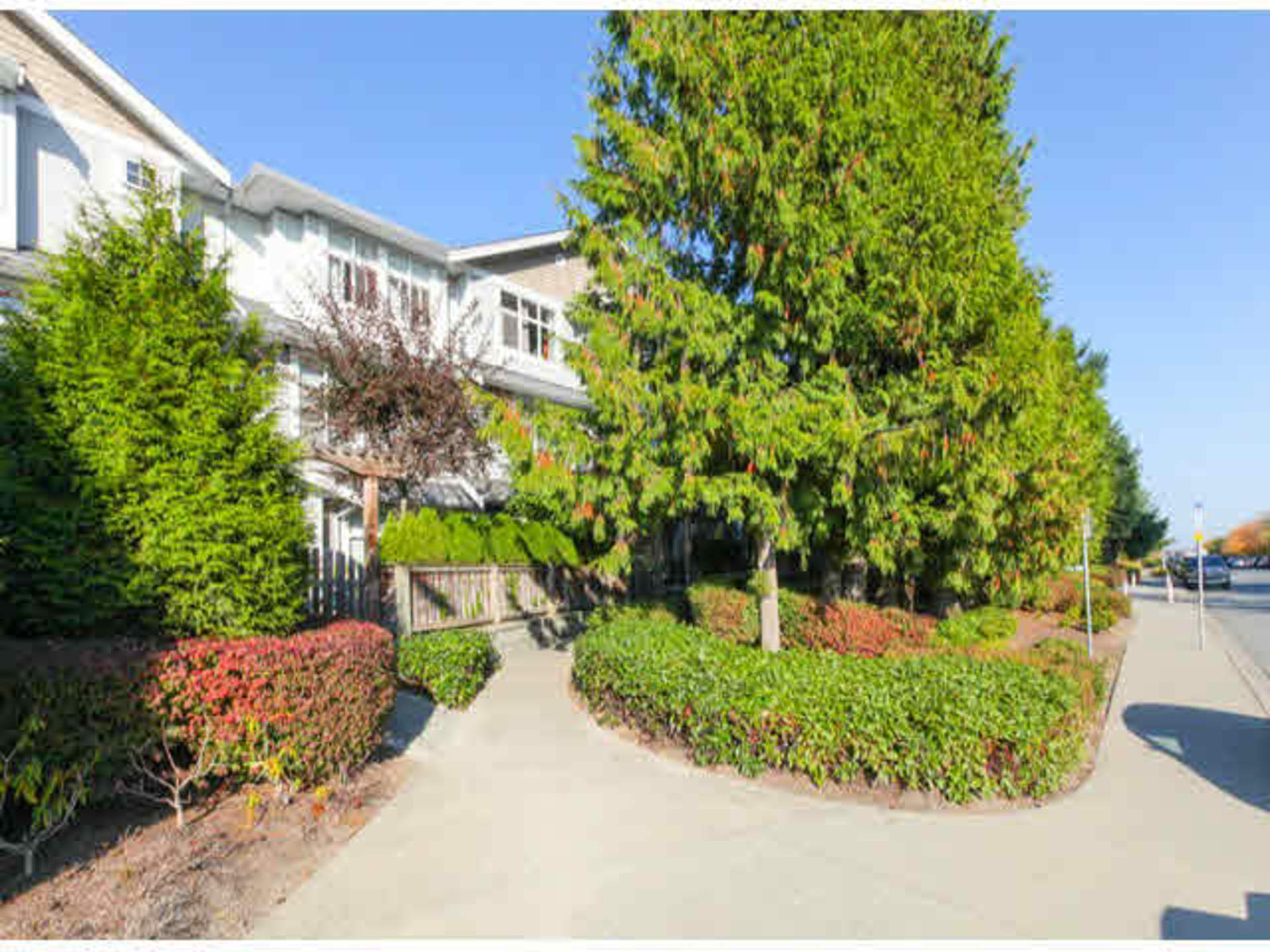 Langley Real Estate at 38 - 20449 66 Avenue, Willoughby Heights, Langley