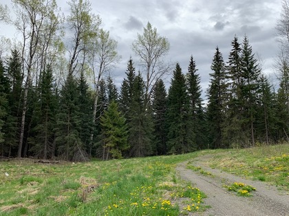 img_1727 at 8353 Rainbow Country Road, Bridge Lake/Sheridan Lake, 100 Mile House
