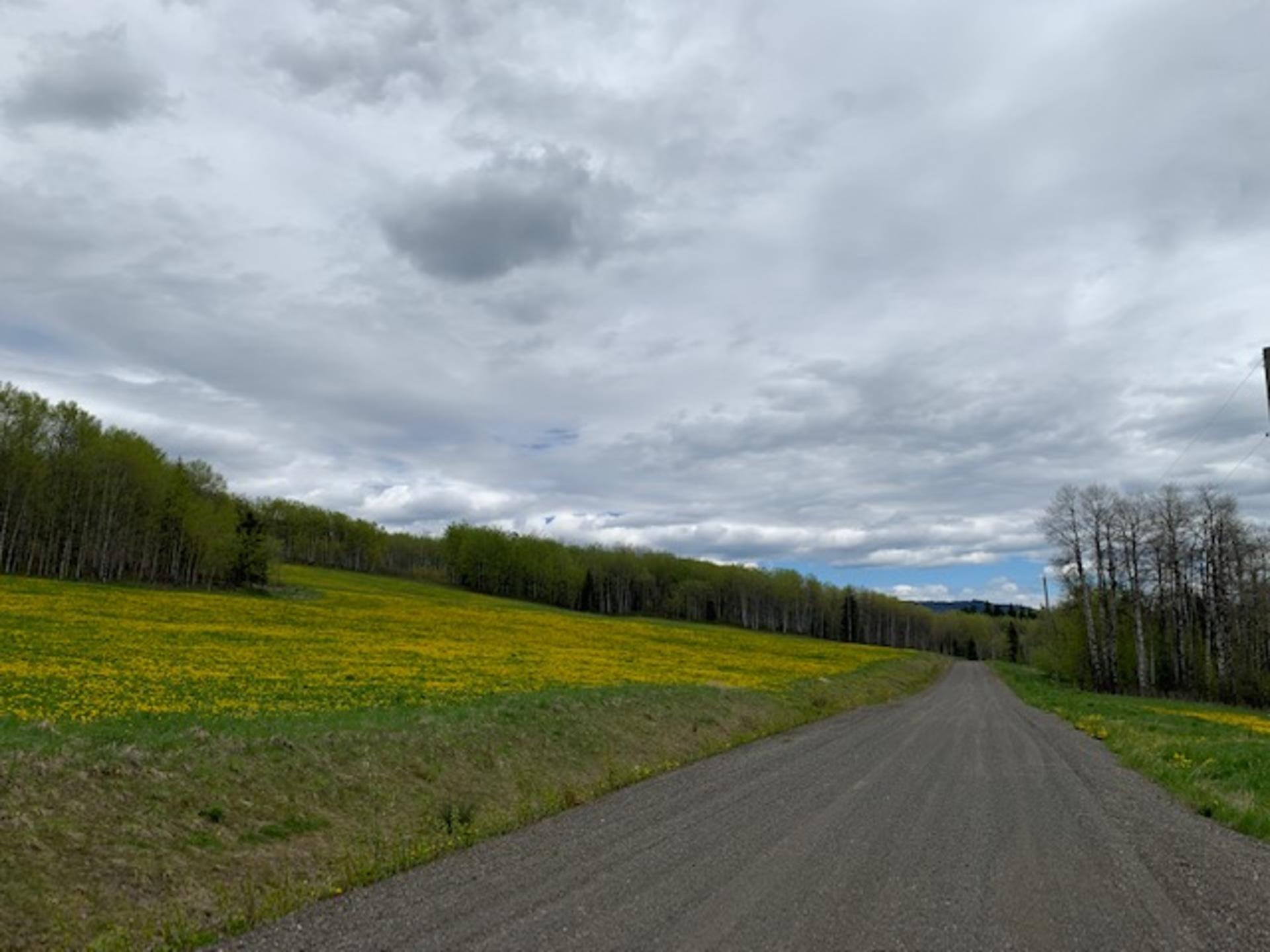 img_1740 at 8353 Rainbow Country Road, Bridge Lake/Sheridan Lake, 100 Mile House