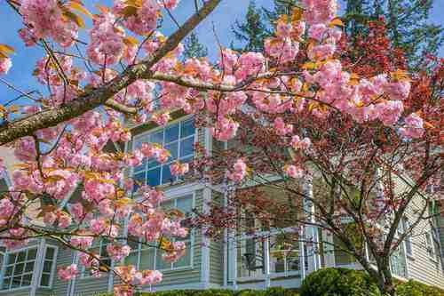 3373-capilano-crescent-capilano-nv-north-vancouver-21 at 304 - 3373 Capilano Crescent, Capilano NV, North Vancouver